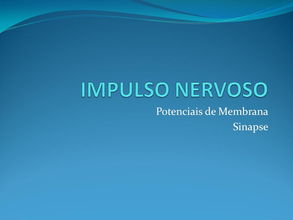 Potenciais de Membrana Sinapse