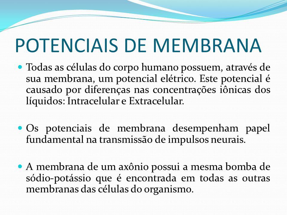POTENCIAIS DE MEMBRANA Todas as células do corpo humano possuem, através de sua membrana, um potencial elétrico. Este potencial é causado por diferenç
