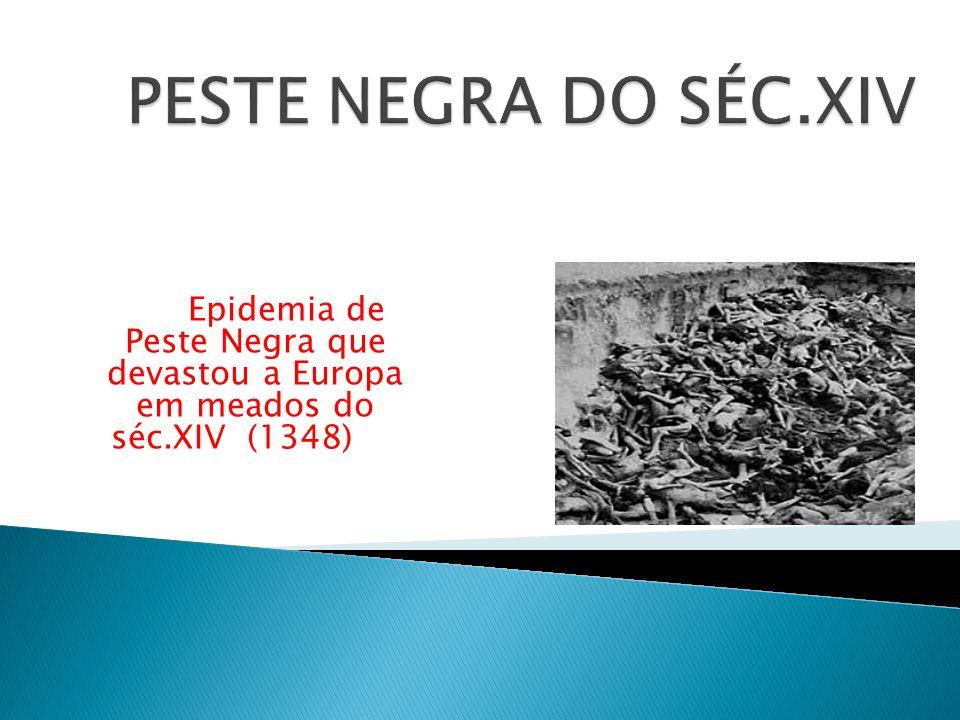 Epidemia de Peste Negra que devastou a Europa em meados do séc.XIV (1348)