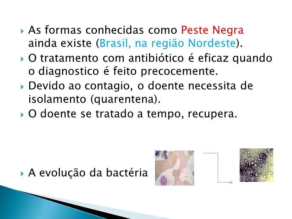 As formas conhecidas como Peste Negra ainda existe (Brasil, na região Nordeste). O tratamento com antibiótico é eficaz quando o diagnostico é feito pr