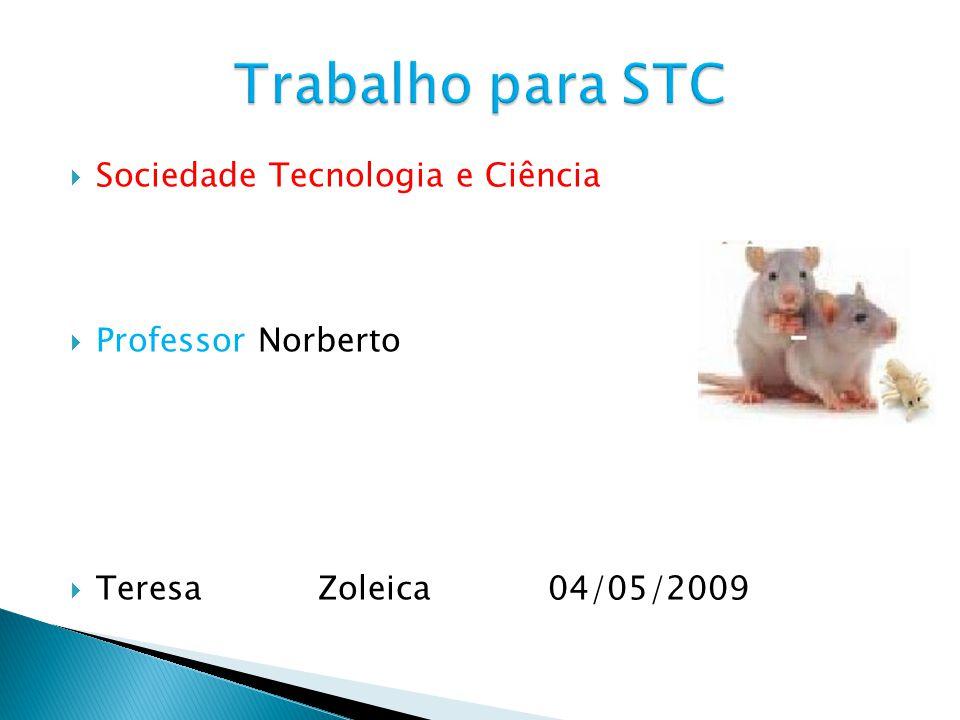 Sociedade Tecnologia e Ciência Professor Norberto Teresa Zoleica 04/05/2009