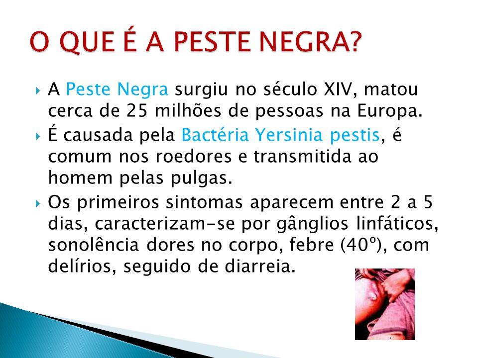 A Peste Negra surgiu no século XIV, matou cerca de 25 milhões de pessoas na Europa. É causada pela Bactéria Yersinia pestis, é comum nos roedores e tr