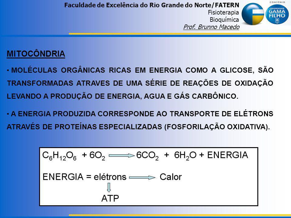 Faculdade de Excelência do Rio Grande do Norte/FATERN Fisioterapia Bioquímica Prof. Brunno Macedo MITOCÔNDRIA MOLÉCULAS ORGÂNICAS RICAS EM ENERGIA COM