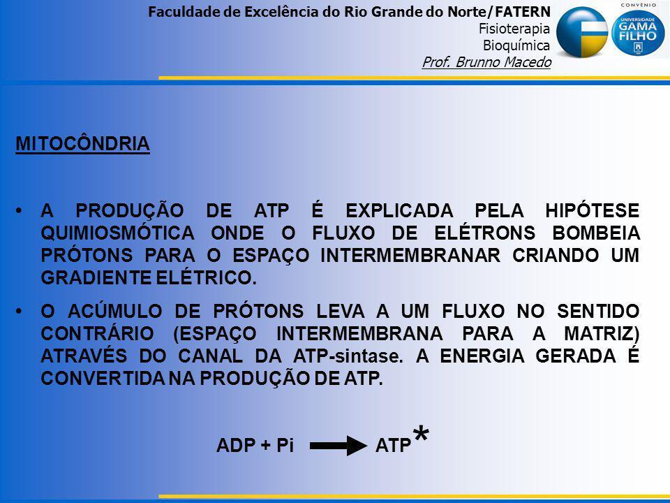 Faculdade de Excelência do Rio Grande do Norte/FATERN Fisioterapia Bioquímica Prof. Brunno Macedo MITOCÔNDRIA A PRODUÇÃO DE ATP É EXPLICADA PELA HIPÓT