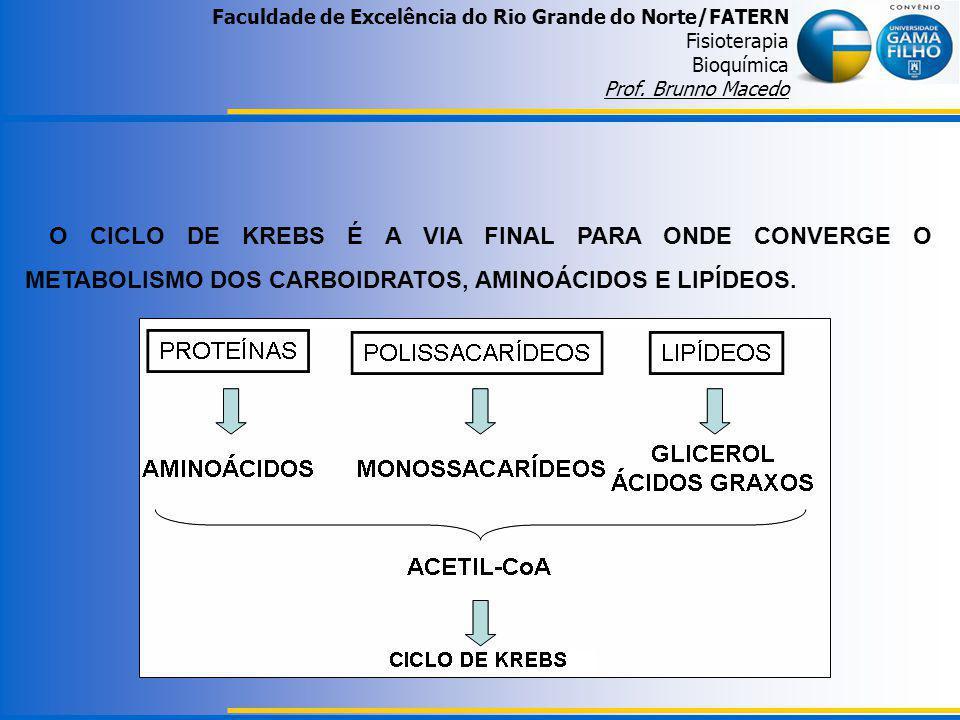 Faculdade de Excelência do Rio Grande do Norte/FATERN Fisioterapia Bioquímica Prof. Brunno Macedo O CICLO DE KREBS É A VIA FINAL PARA ONDE CONVERGE O