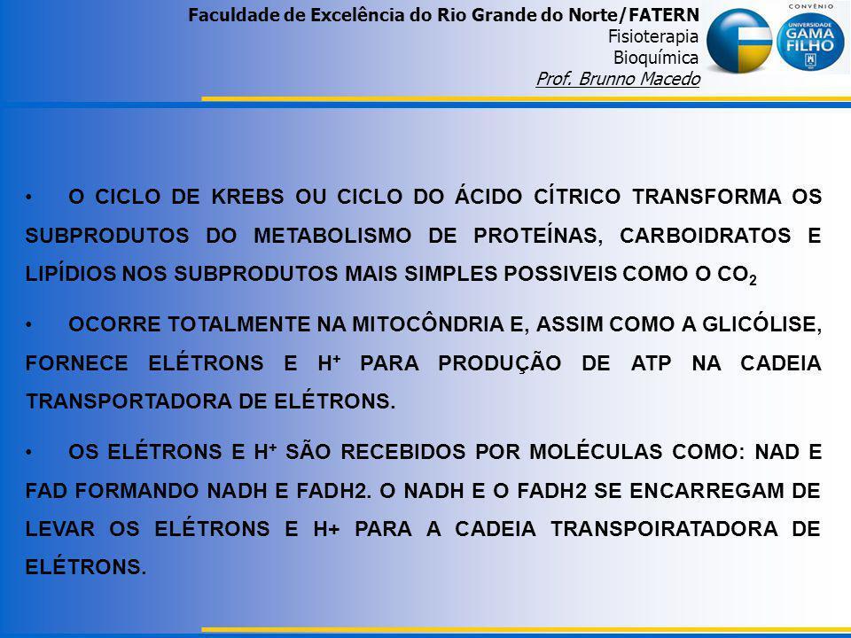 Faculdade de Excelência do Rio Grande do Norte/FATERN Fisioterapia Bioquímica Prof. Brunno Macedo O CICLO DE KREBS OU CICLO DO ÁCIDO CÍTRICO TRANSFORM