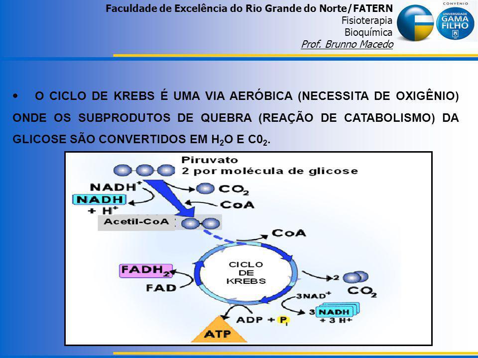 Faculdade de Excelência do Rio Grande do Norte/FATERN Fisioterapia Bioquímica Prof. Brunno Macedo O CICLO DE KREBS É UMA VIA AERÓBICA (NECESSITA DE OX