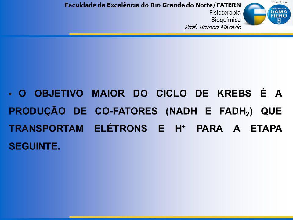 Faculdade de Excelência do Rio Grande do Norte/FATERN Fisioterapia Bioquímica Prof. Brunno Macedo O OBJETIVO MAIOR DO CICLO DE KREBS É A PRODUÇÃO DE C