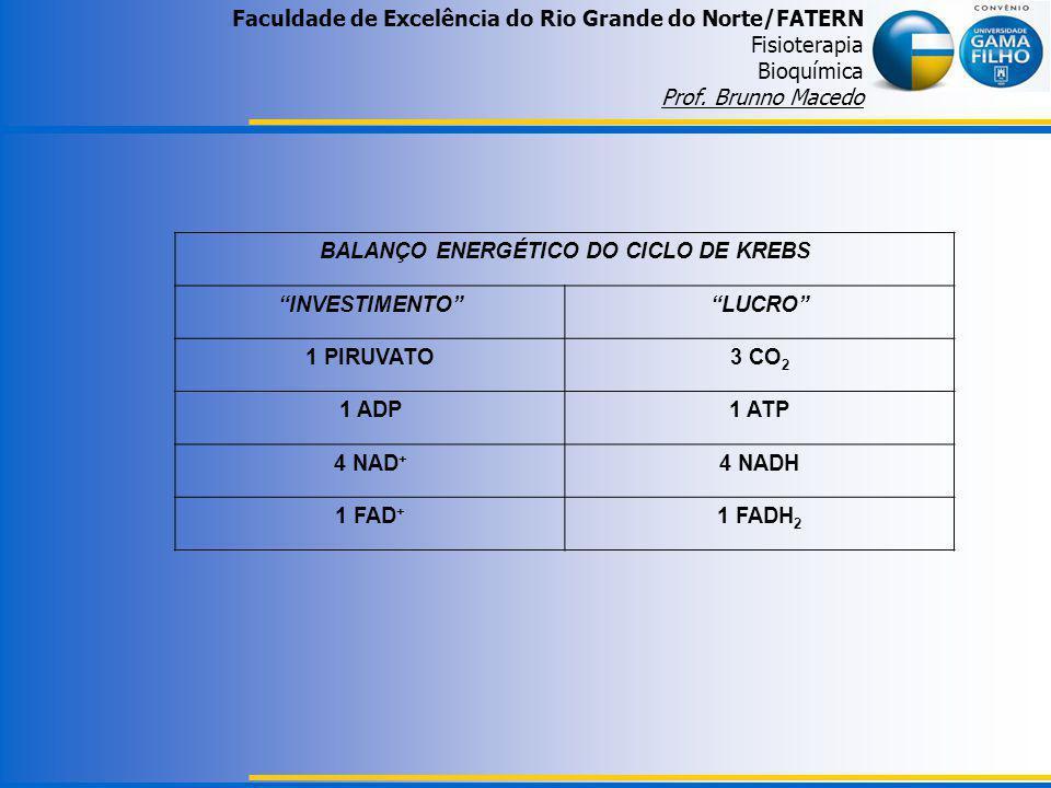 Faculdade de Excelência do Rio Grande do Norte/FATERN Fisioterapia Bioquímica Prof. Brunno Macedo BALANÇO ENERGÉTICO DO CICLO DE KREBS INVESTIMENTOLUC