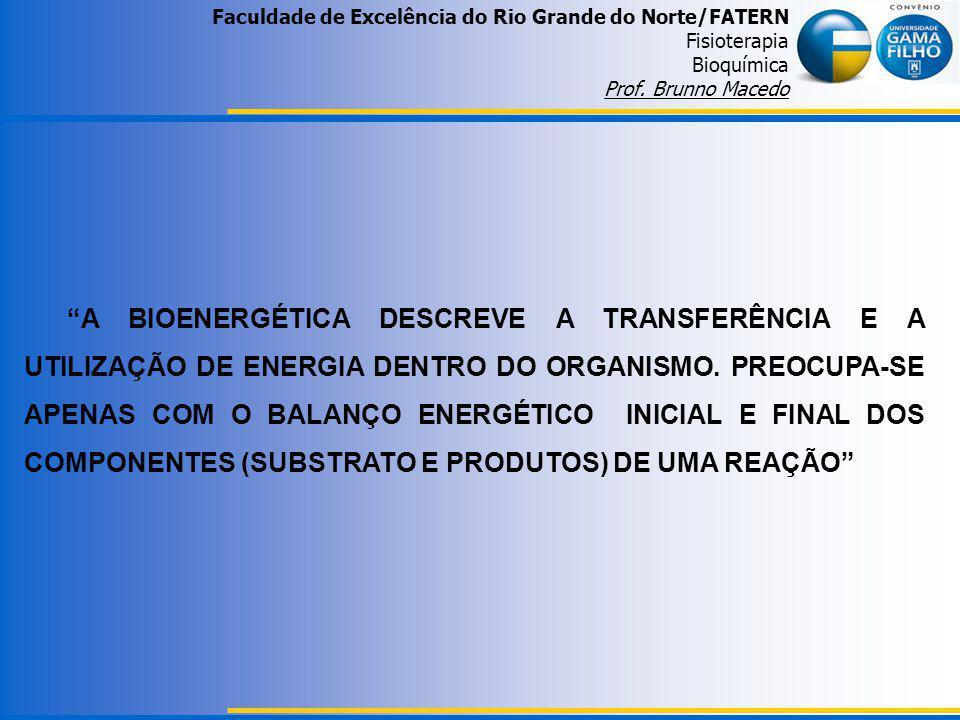 Faculdade de Excelência do Rio Grande do Norte/FATERN Fisioterapia Bioquímica Prof. Brunno Macedo A BIOENERGÉTICA DESCREVE A TRANSFERÊNCIA E A UTILIZA