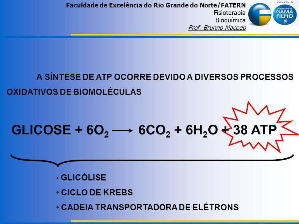 GLICOSE + 6O 2 6CO 2 + 6H 2 O + 38 ATP A SÍNTESE DE ATP OCORRE DEVIDO A DIVERSOS PROCESSOS OXIDATIVOS DE BIOMOLÉCULAS GLICÓLISE CICLO DE KREBS CADEIA