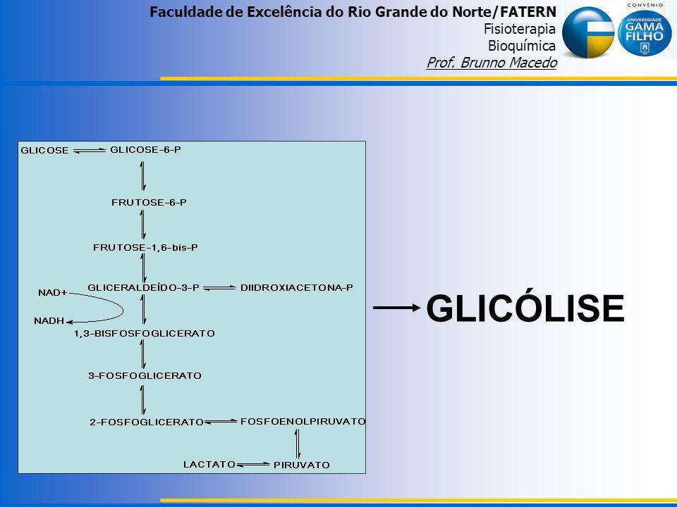Faculdade de Excelência do Rio Grande do Norte/FATERN Fisioterapia Bioquímica Prof. Brunno Macedo GLICÓLISE
