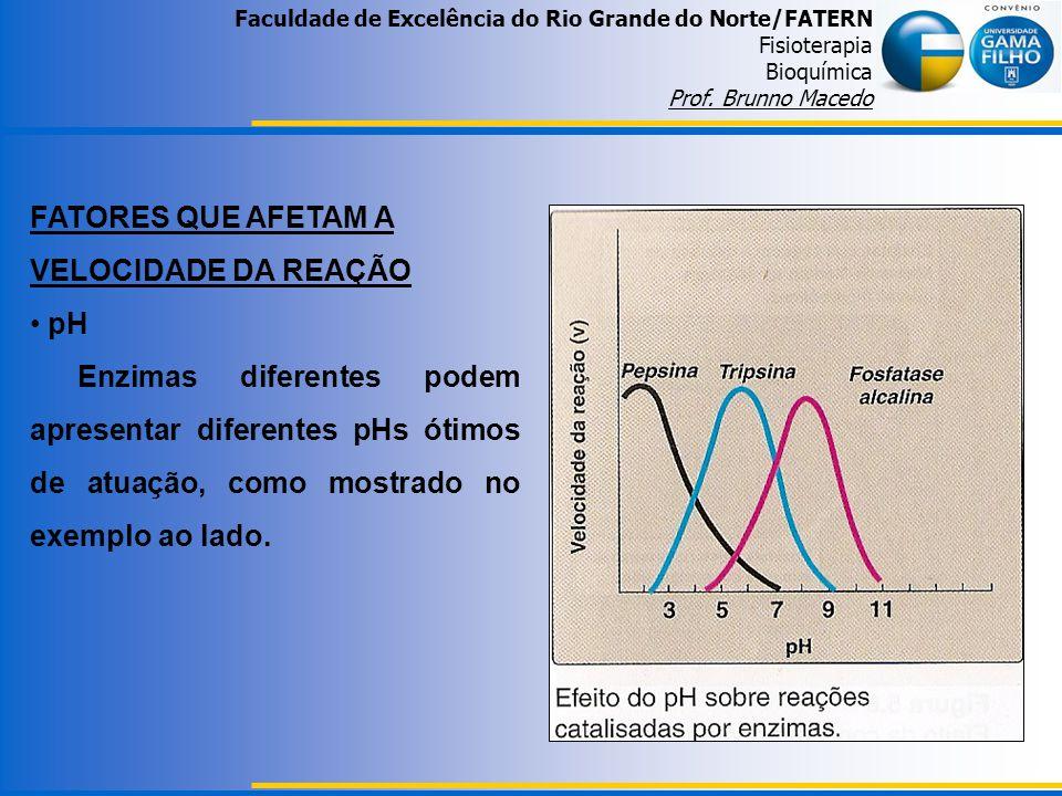 Faculdade de Excelência do Rio Grande do Norte/FATERN Fisioterapia Bioquímica Prof. Brunno Macedo FATORES QUE AFETAM A VELOCIDADE DA REAÇÃO pH Enzimas