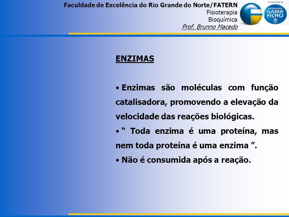 Faculdade de Excelência do Rio Grande do Norte/FATERN Fisioterapia Bioquímica Prof. Brunno Macedo ENZIMAS Enzimas são moléculas com função catalisador