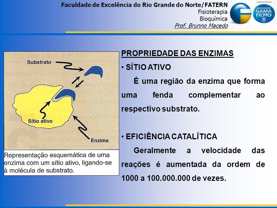 Faculdade de Excelência do Rio Grande do Norte/FATERN Fisioterapia Bioquímica Prof. Brunno Macedo PROPRIEDADE DAS ENZIMAS SÍTIO ATIVO É uma região da