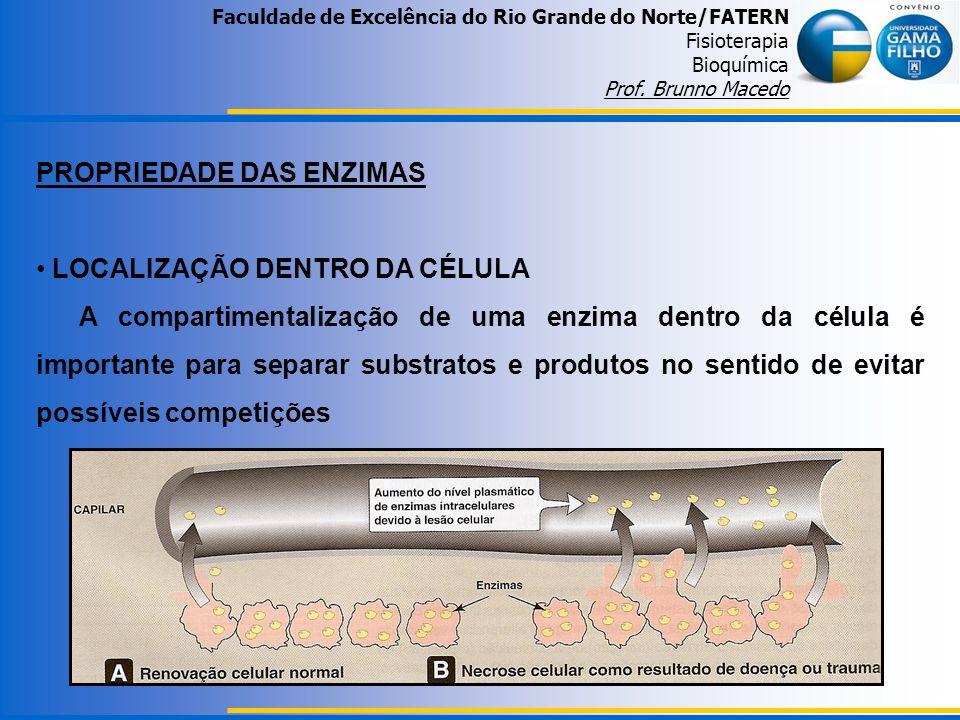Faculdade de Excelência do Rio Grande do Norte/FATERN Fisioterapia Bioquímica Prof. Brunno Macedo PROPRIEDADE DAS ENZIMAS LOCALIZAÇÃO DENTRO DA CÉLULA