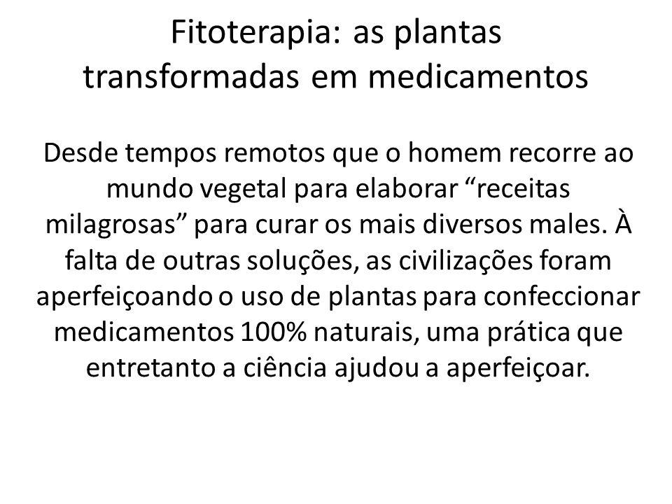 Fitoterapia: as plantas transformadas em medicamentos Desde tempos remotos que o homem recorre ao mundo vegetal para elaborar receitas milagrosas para curar os mais diversos males.