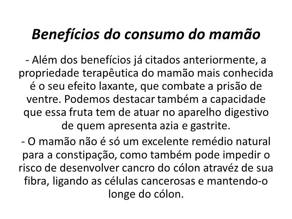 Benefícios do consumo do mamão - Além dos benefícios já citados anteriormente, a propriedade terapêutica do mamão mais conhecida é o seu efeito laxante, que combate a prisão de ventre.