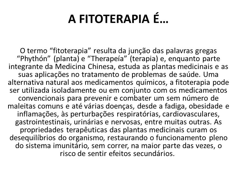 A FITOTERAPIA É… O termo fitoterapia resulta da junção das palavras gregas Phythón (planta) e Therapeía (terapia) e, enquanto parte integrante da Medicina Chinesa, estuda as plantas medicinais e as suas aplicações no tratamento de problemas de saúde.