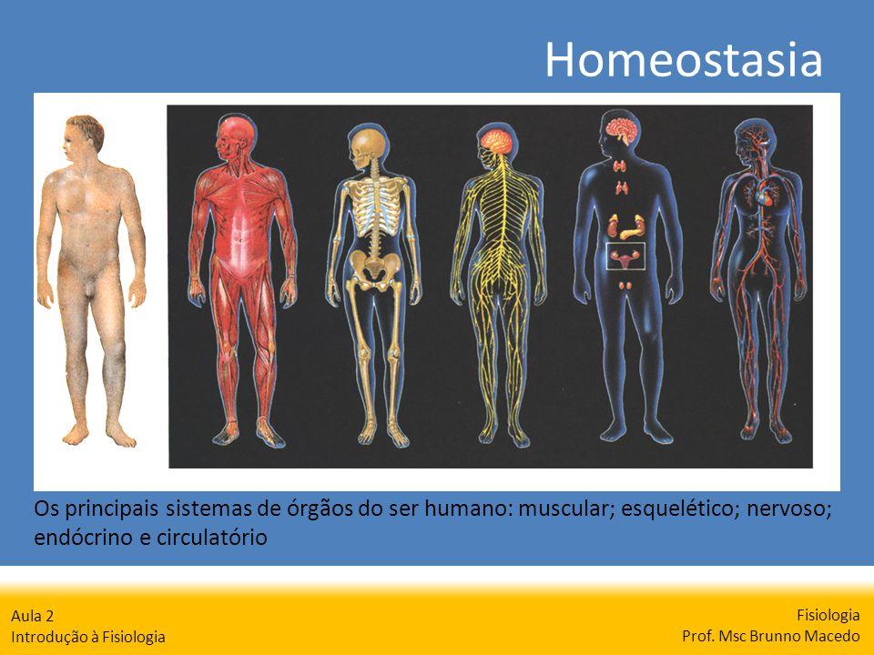 Homeostasia Fisiologia Prof. Msc Brunno Macedo Aula 2 Introdução à Fisiologia Os principais sistemas de órgãos do ser humano: muscular; esquelético; n