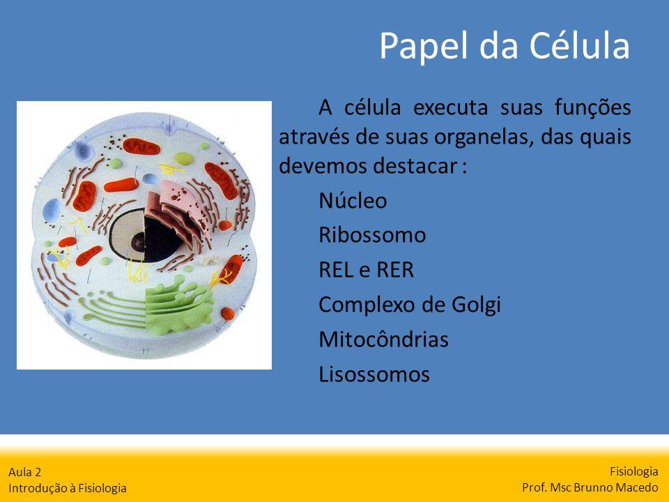 Papel da Célula Fisiologia Prof. Msc Brunno Macedo Aula 2 Introdução à Fisiologia A célula executa suas funções através de suas organelas, das quais d