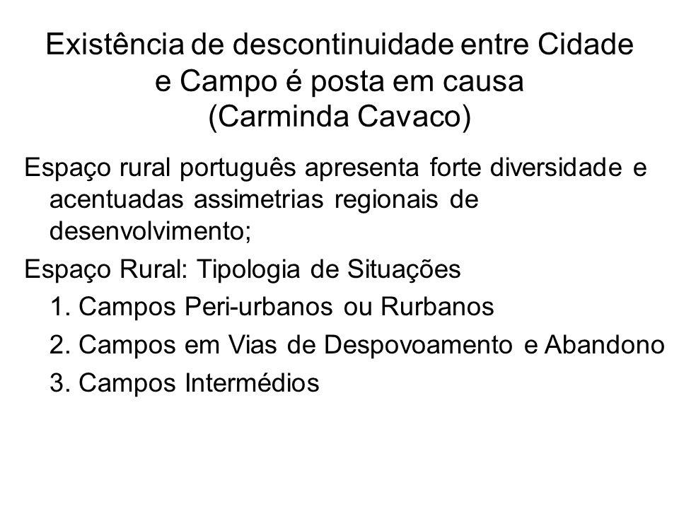 Existência de descontinuidade entre Cidade e Campo é posta em causa (Carminda Cavaco) Espaço rural português apresenta forte diversidade e acentuadas