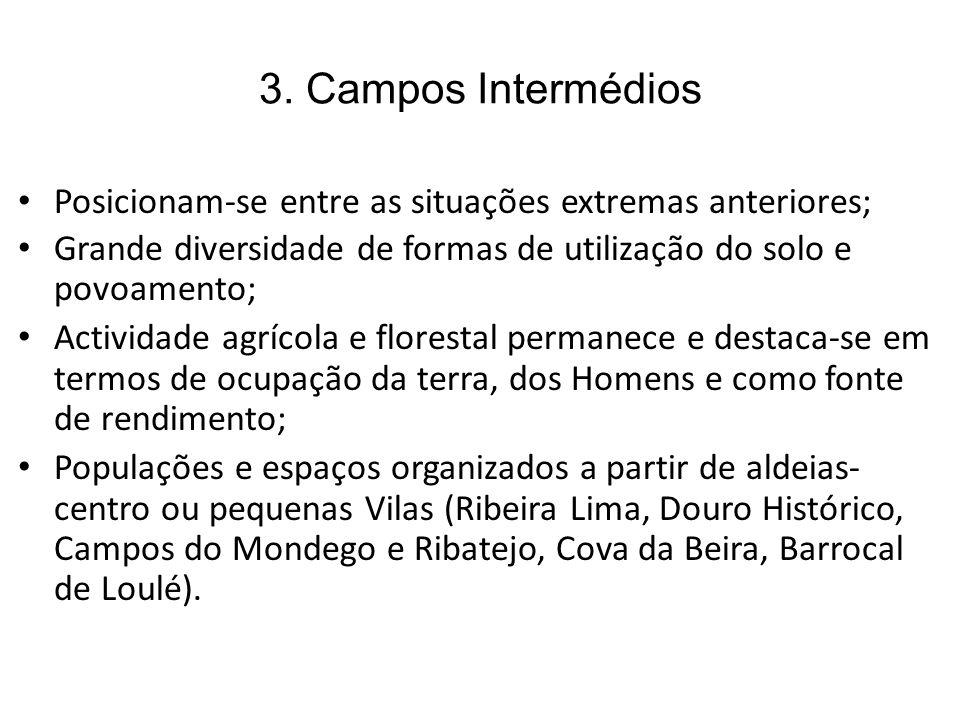 3. Campos Intermédios Posicionam-se entre as situações extremas anteriores; Grande diversidade de formas de utilização do solo e povoamento; Actividad