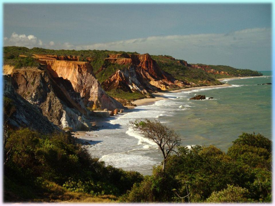 Objetivos dos POOC : Ordenamento dos diferentes usos e actividades especificas da orla costeira; A classificação das praias e a regulamentação do uso