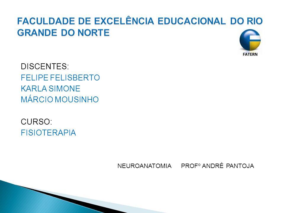 DISCENTES: FELIPE FELISBERTO KARLA SIMONE MÁRCIO MOUSINHO CURSO: FISIOTERAPIA NEUROANATOMIA PROFº ANDRÉ PANTOJA