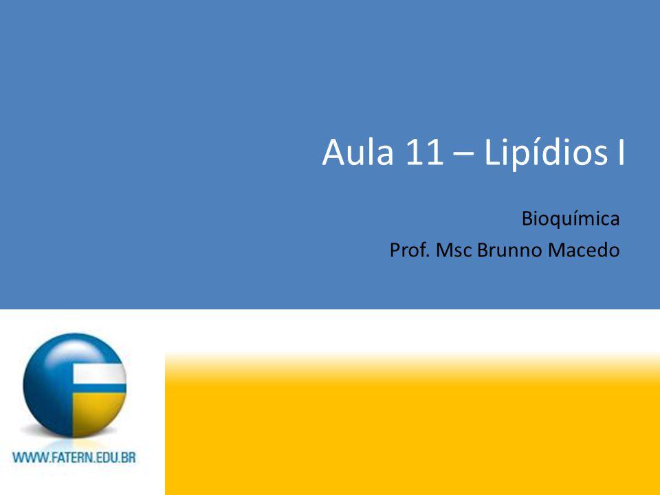 Aula 11 – Lipídios I Bioquímica Prof. Msc Brunno Macedo