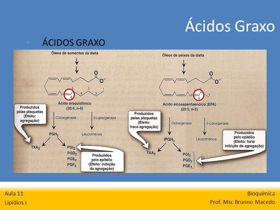 Bioquímica Prof. Msc Brunno Macedo Aula 11 Lipídios I ÁCIDOS GRAXO