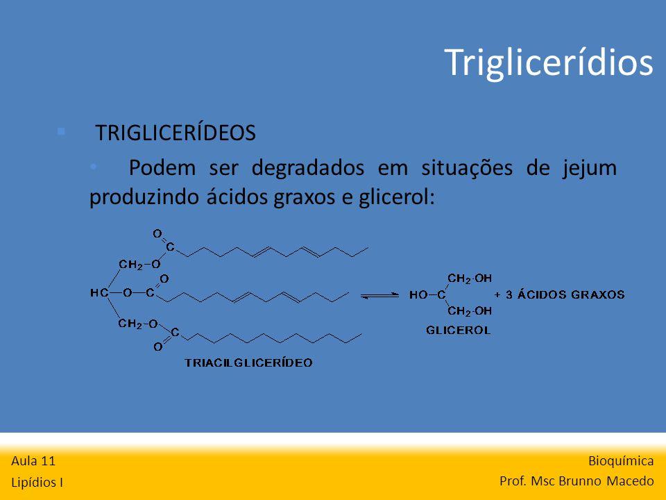 Triglicerídios Bioquímica Prof.