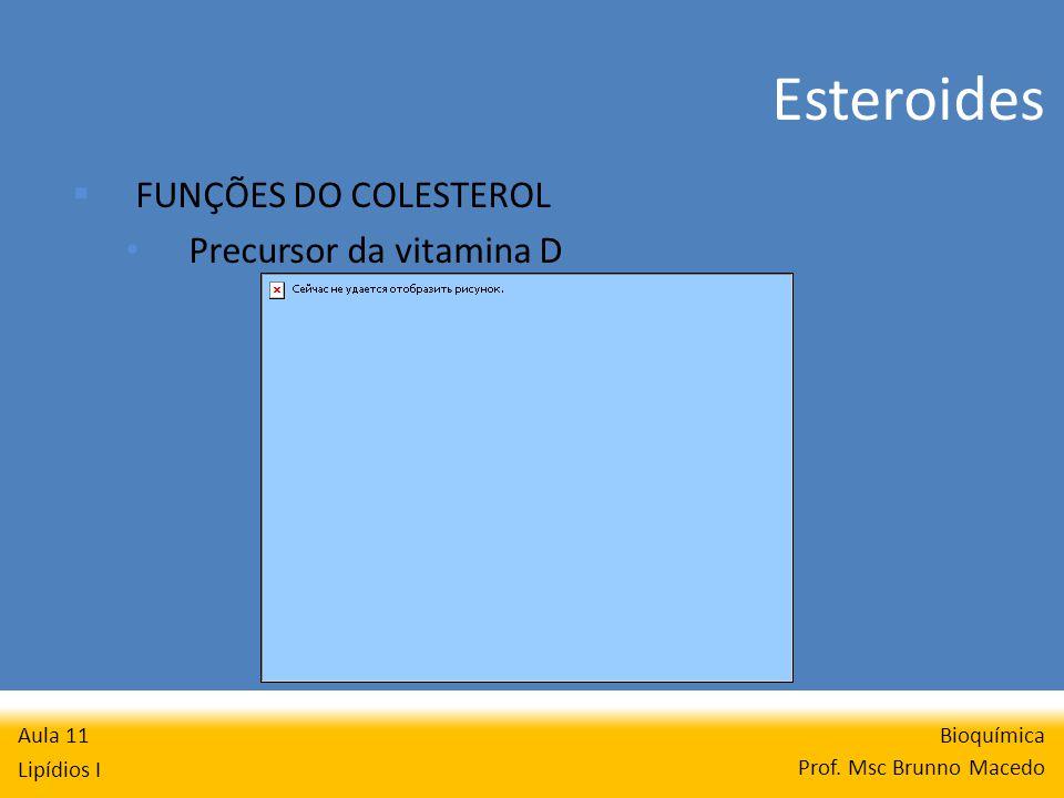 Esteroides Bioquímica Prof.