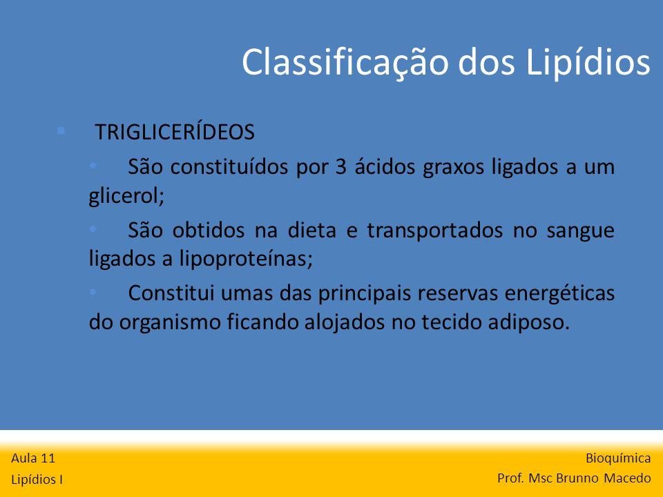 Classificação dos Lipídios Bioquímica Prof.