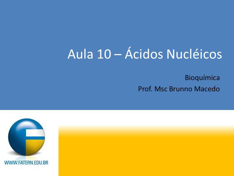 Aula 10 – Ácidos Nucléicos Bioquímica Prof. Msc Brunno Macedo