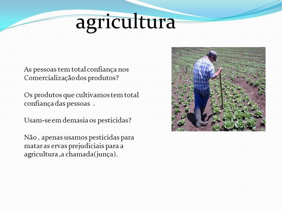agricultura As pessoas tem total confiança nos Comercialização dos produtos? Os produtos que cultivamos tem total confiança das pessoas. Usam-se em de