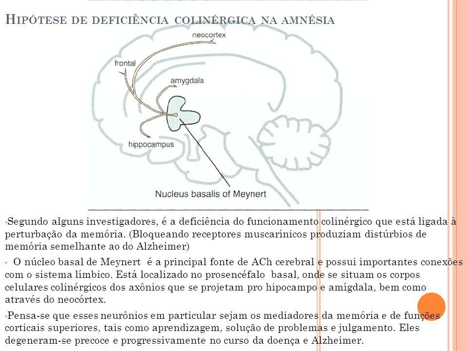 Segundo alguns investigadores, é a deficiência do funcionamento colinérgico que está ligada à perturbação da memória. (Bloqueando receptores muscaríni