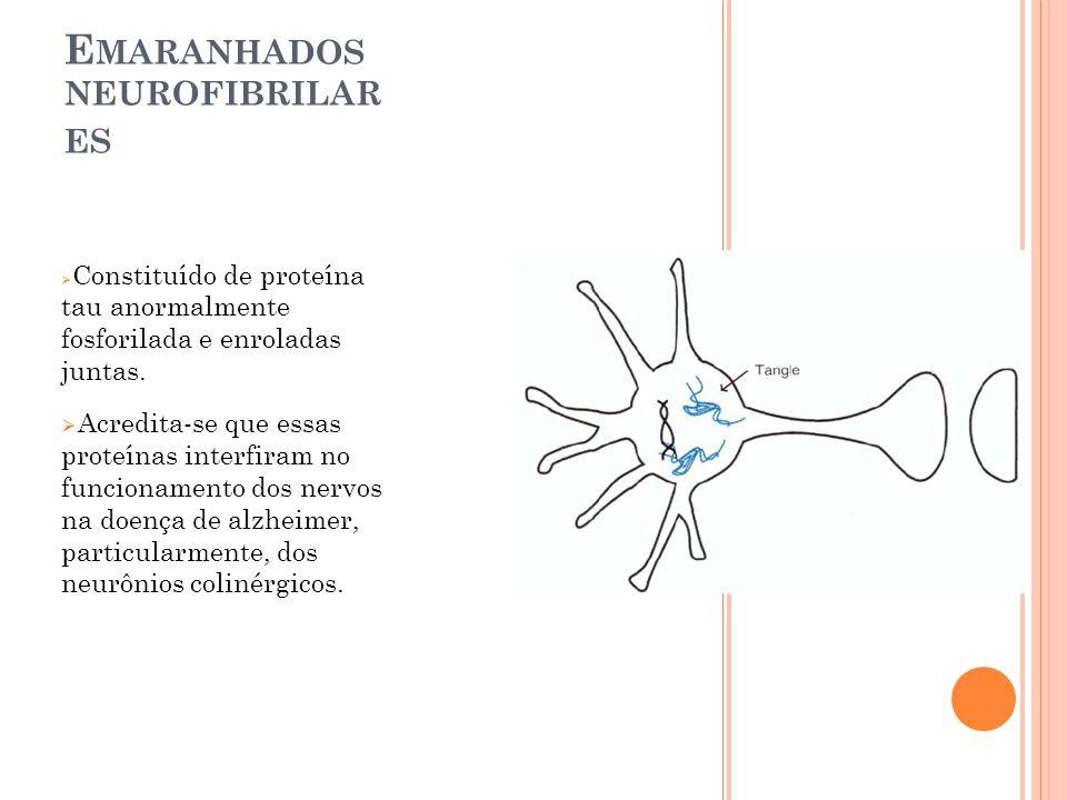E MARANHADOS NEUROFIBRILAR ES Constituído de proteína tau anormalmente fosforilada e enroladas juntas. Acredita-se que essas proteínas interfiram no f
