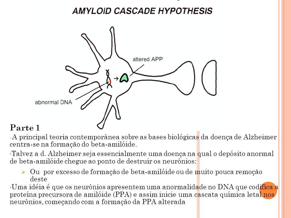 A principal teoria contemporânea sobre as bases biológicas da doença de Alzheimer centra-se na formação do beta-amilóide.