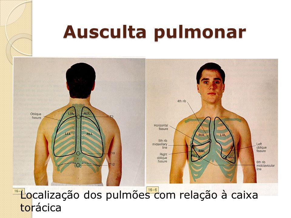 Ausculta pulmonar Localização dos pulmões com relação à caixa torácica