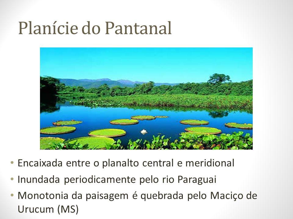 Planície do Pantanal Encaixada entre o planalto central e meridional Inundada periodicamente pelo rio Paraguai Monotonia da paisagem é quebrada pelo M