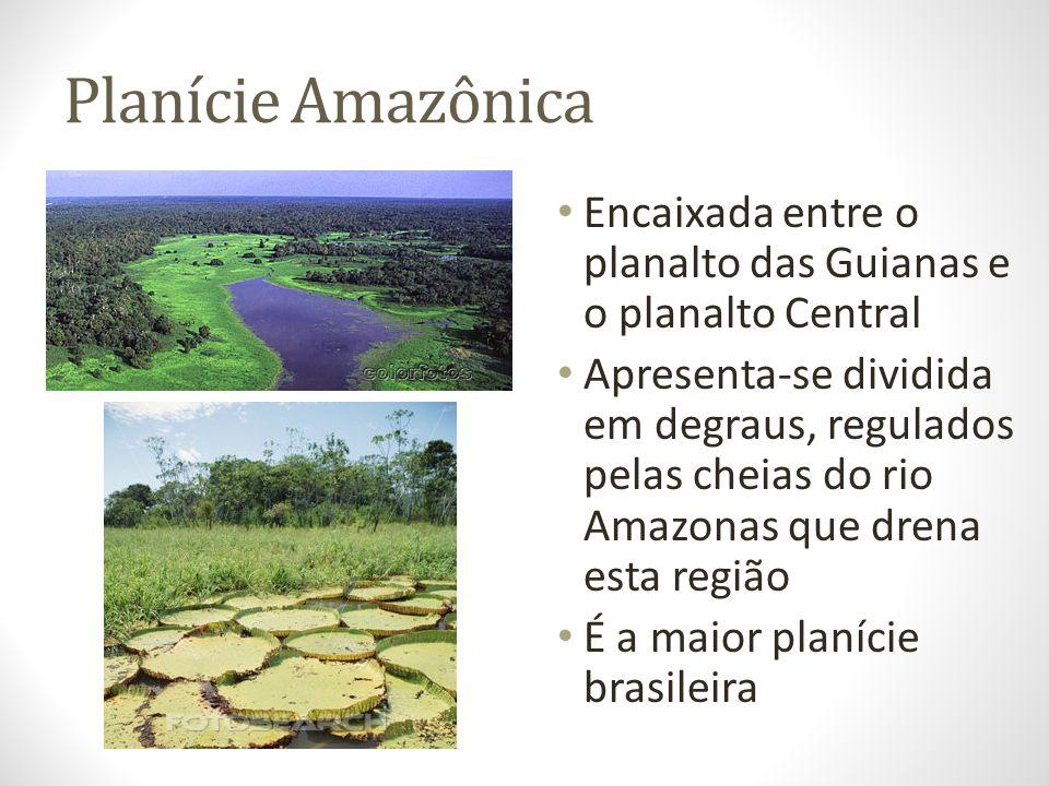 Planície Amazônica Encaixada entre o planalto das Guianas e o planalto Central Apresenta-se dividida em degraus, regulados pelas cheias do rio Amazona
