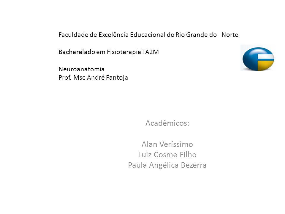 Acadêmicos: Alan Veríssimo Luiz Cosme Filho Paula Angélica Bezerra Faculdade de Excelência Educacional do Rio Grande do Norte Bacharelado em Fisiotera