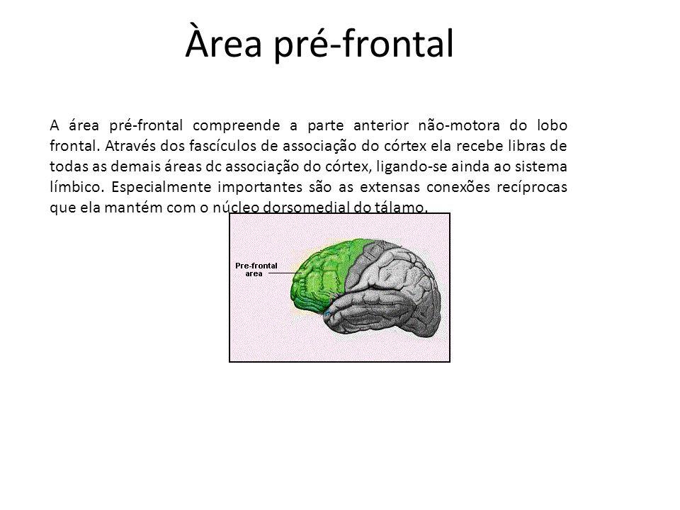 Àrea pré-frontal A área pré-frontal compreende a parte anterior não-motora do lobo frontal. Através dos fascículos de associação do córtex ela recebe