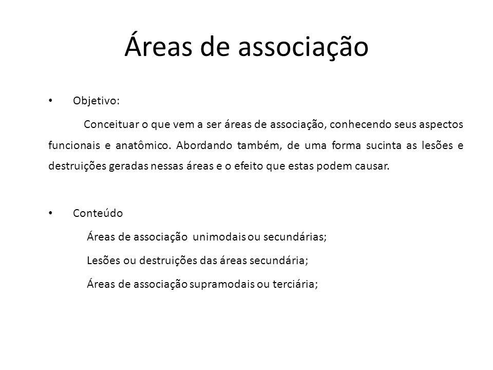 Áreas de associação Objetivo: Conceituar o que vem a ser áreas de associação, conhecendo seus aspectos funcionais e anatômico. Abordando também, de um