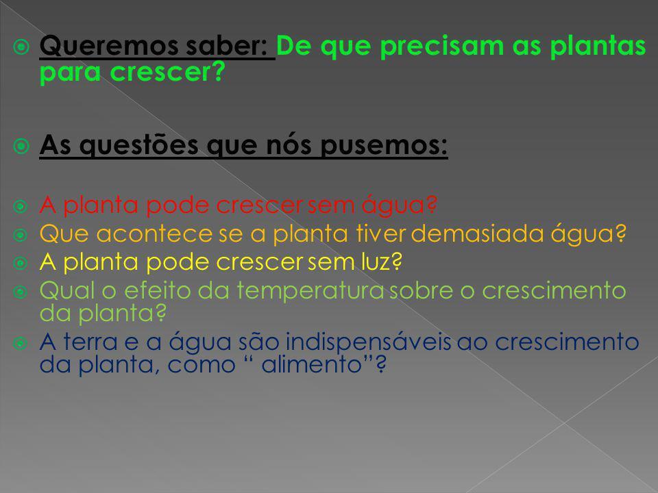 Queremos saber: De que precisam as plantas para crescer? As questões que nós pusemos: A planta pode crescer sem água? Que acontece se a planta tiver d