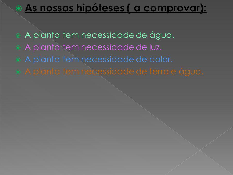 As nossas hipóteses ( a comprovar): A planta tem necessidade de água. A planta tem necessidade de luz. A planta tem necessidade de calor. A planta tem