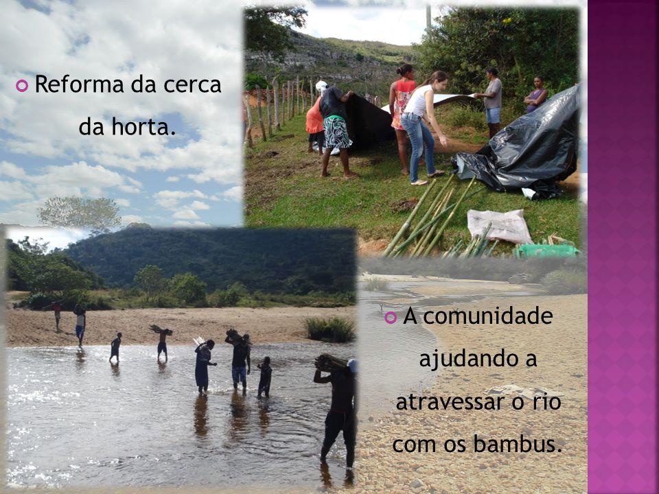 Reforma da cerca da horta. A comunidade ajudando a atravessar o rio com os bambus.