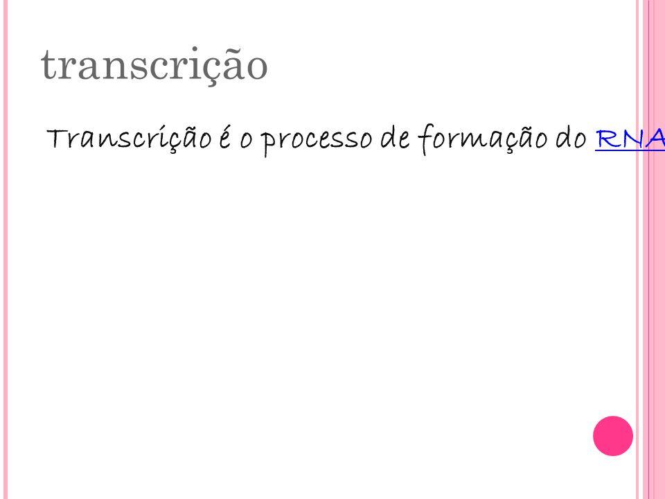 transcrição Transcrição é o processo de formação do RNAm mensageiro a partir da cadeia-molde de DNA. Este tem como função