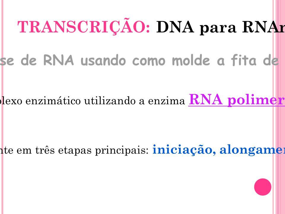 TRANSCRIÇÃO: DNA para RNAm Síntese de RNA usando como molde a fita de DNA. É realizada por um complexo enzimático utilizando a enzima RNA polimerase c
